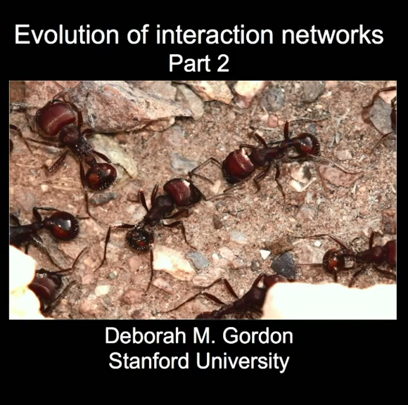 Evolution of interaction networks 相互..